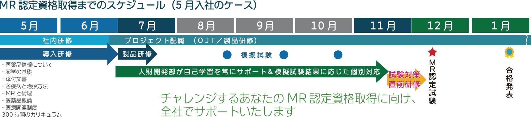MR認定資格取得までの教育研修スケジュール